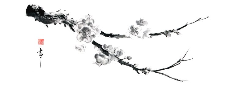 peinture à l'encre de chien représentant une branche de cerisier en fleur
